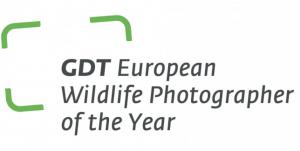 Sarah Skinner winner GDT European Wildlife photographer of the year