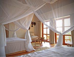 twin bed room at bwindi chimp and gorilla photo safari