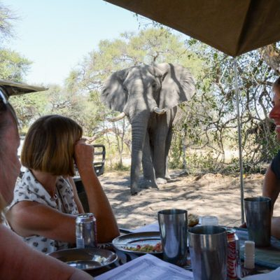 On safari with Andy & Sarah (Photographic Tours)