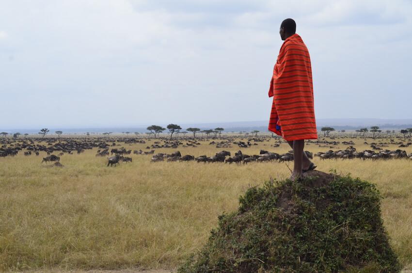 Image 3. Jackson works hard to protect this wilderness. (Photo Courtesy Jackson Looseyia) jpg