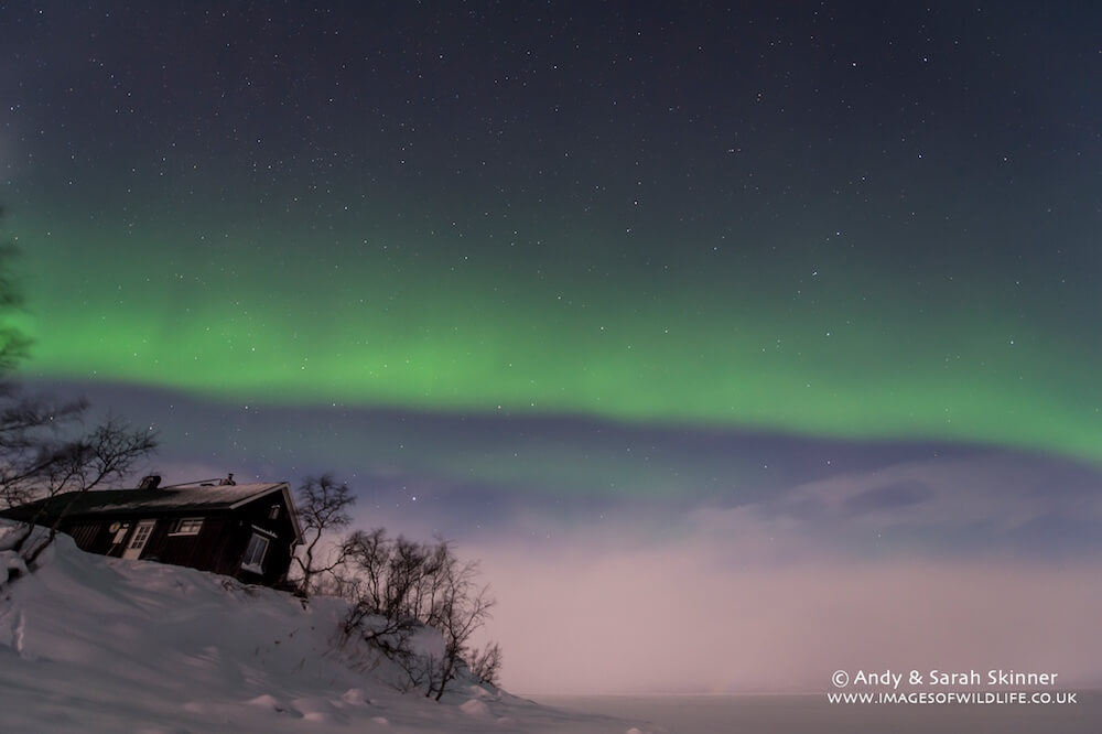 Northern Lights 022