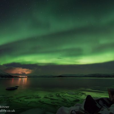 Northern Lights 029