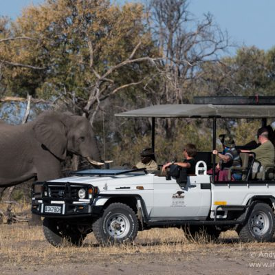 On safari with Andy & Sarah (Photographic Tours)